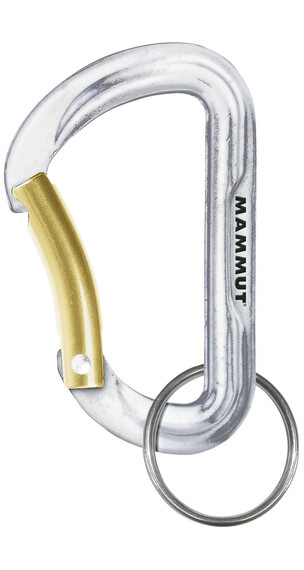 Mammut Element - Accesorios de viaje - Dorado/Plateado